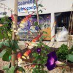 Carré potager entrée Scarabée Biocoop Bruz