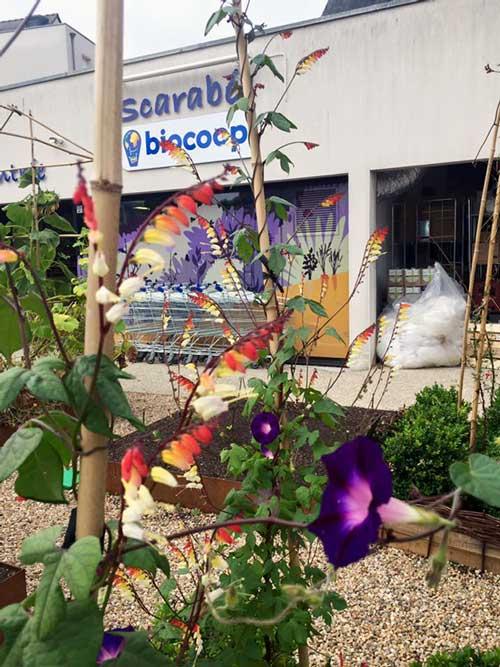 Magasin Bruz: l'entrée par la place du Vert Buisson à nouveau ouverte