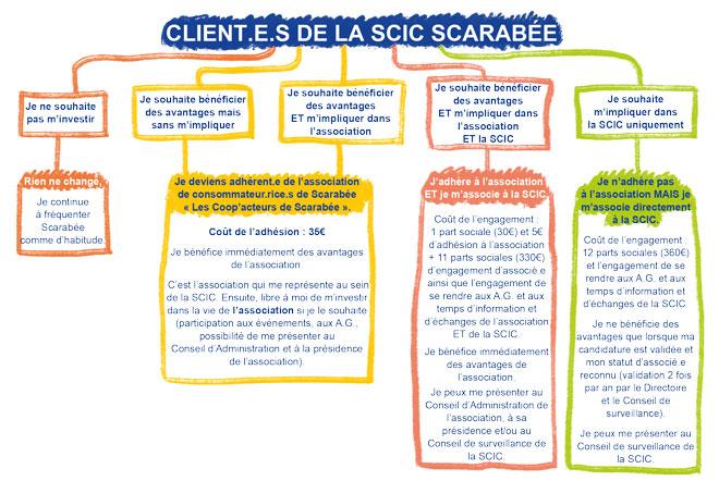 Les choix possibles qui s'offrent aux sociétaires de Scarabée si la coopérative devient une SCIC.