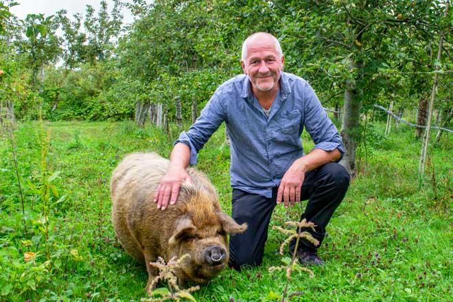 Jean-Yves Fillatre arboriculteur bio verger bio cochon Kunekune